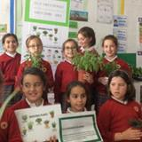 The Power Of Plants. Stem Discovery Week 2018