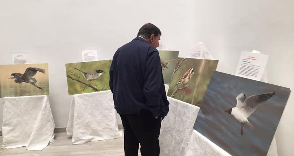 EXPOSICIÓN DE AVES. COLEGIO MONTECALPE