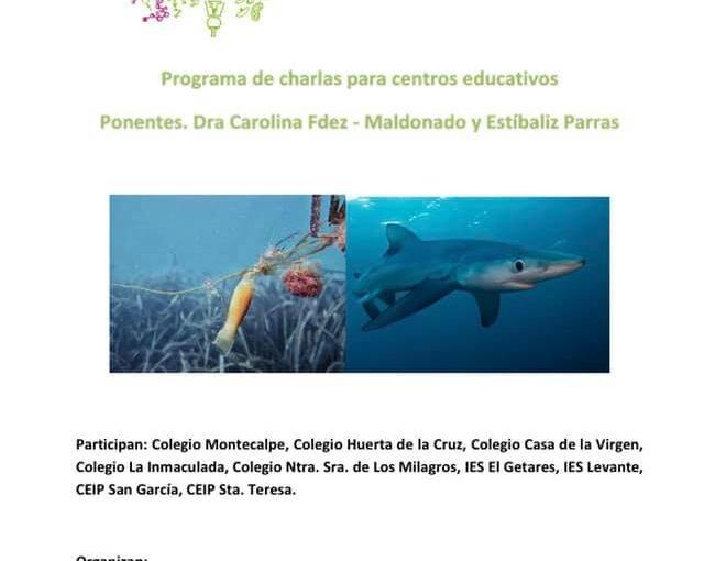 CHARLA VIRTUAL SOBRE TIBURONES Y RAYAS DE SEASHORE Y SANAMARES